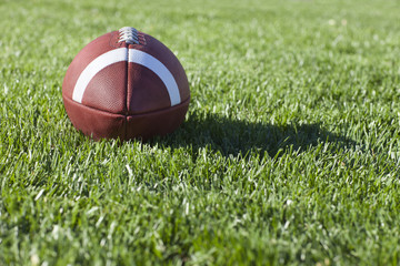 College style football on grass field