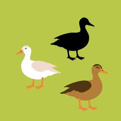 duck vector illustration style Flat black silhouette