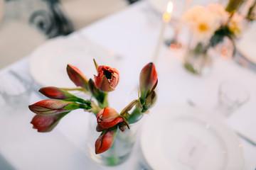 Flowers of gippeastrum in wedding floristics. Wedding in Montenegro. Wedding decorations.