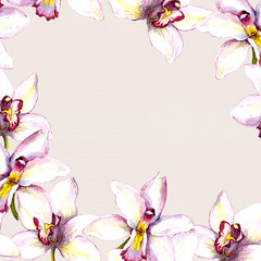 Floral beige background with white orchid flower. Hand painted aquarell drawing