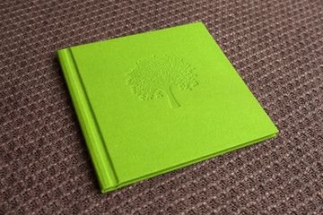 Photo book with textile cover.  Light green color with decorative stamping.