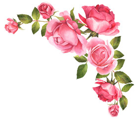 Roses watercolor illustration bouquet