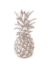 Fresh whole pineapple