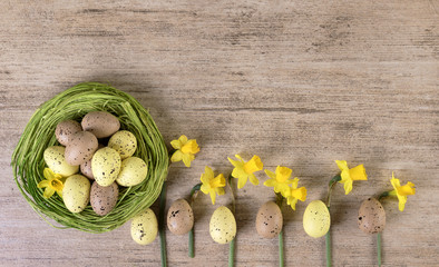 Easter holiday retro background. Spring flowers arrangement with Easter eggs in green straw nest on light brown background