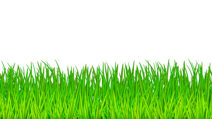 Vector horisontal seamless pattern green grass endless texture template