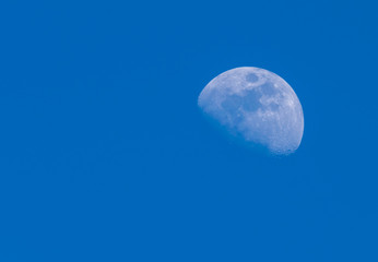 Early morning Moon in a Waxing Gibbous phase in the bright blue sky background. Detailed craters. Copy space.