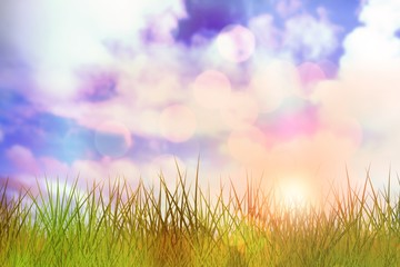 Composite image of grass against white background