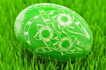 pisanka wielkanocna na trawie