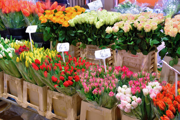 flower market (marche forville) Cannes France