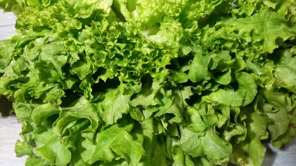 Lettuce, vegetables, garnish