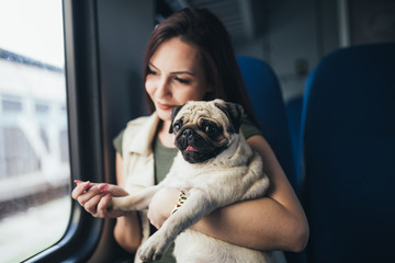 Beautiful young woman sitting in train with her pug and looking through window. Selective focus on dog.