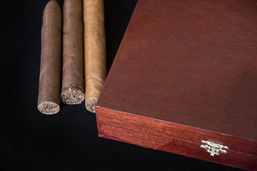 Humidor humidifier and cigars on black background