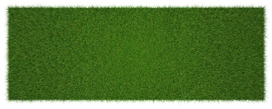 3d rendering of a grass patch isolated on white for architecture design or othe use