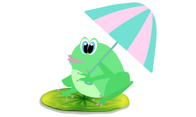 Frog and umbrella Illustration