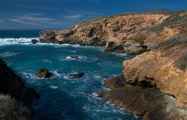 Point Lobos Coastal Landscape
