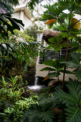 A walk through the Botanical gardens