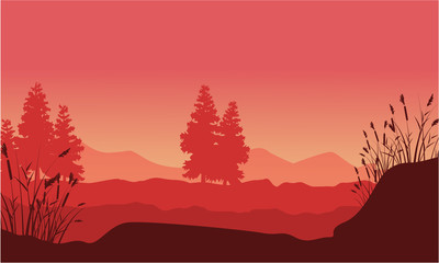 Silhouette of desert with spruce landscape