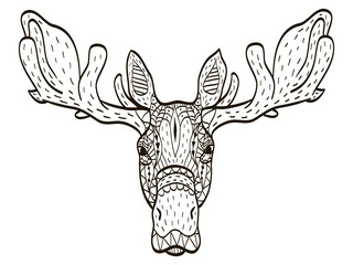 deer head coloring vector for adults