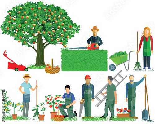 Gartenpflege  Gartenarbeit. Gartenwerkzeuge, Gartenpflege