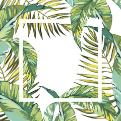 Banner, poster with palm leaves, jungle leaf. Beautiful vector floral tropical summer background. EPS 10