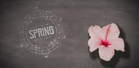 Composite image of spring logo against background