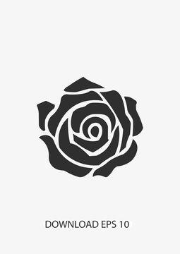 Rose icon, Vector