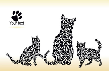 Silhouettes of cat and kittens from the cat tracks