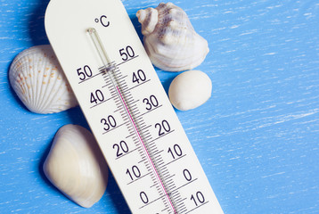 Thermometer and seashells on a blue table