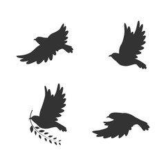 Fredom birds vector illustration