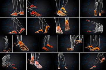3d rendering  medical illustration of the foot bone