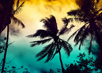 Silhouette coconut palm trees with sun light on sunset sky background. Travel concept. Photo from Kabi, Thailand. Vintage colors and boost up color processing.