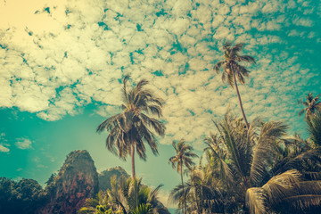 Coconut palm trees and limestone rocks with sun light on sunrise sky background. Travel concept. Photo from Kabi, Thailand. Vintage colors and boost up color processing.