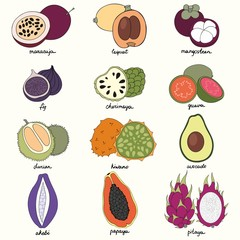 Exotic fruits. Set of vector illustrations
