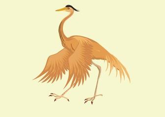 Redhead Heron isolated vector illustration