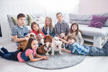 Cute kids lying on the floor with the puppies English bulldog