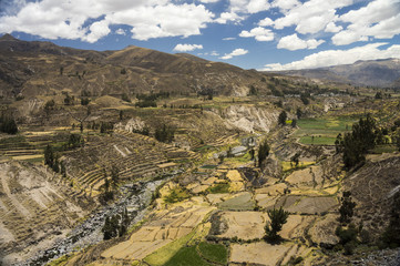 Agricultural terraces and Colca river. Arequipa, Peru