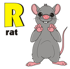 Animal, rodent, rat, mouse, cartoon, gray, teeth, tail, mustache, stand, signs, symbols, letters,  word, name, inscription, r, yellow, black, preschool