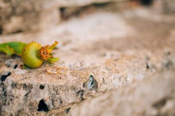 Wedding rings on a background of a pomegranate. Wedding jewelry.