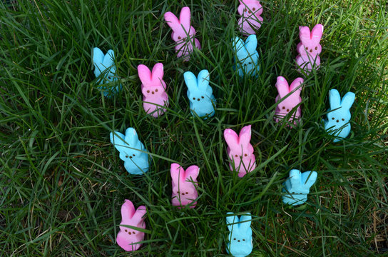 pink and blue Easter marshmallow rabbit candy