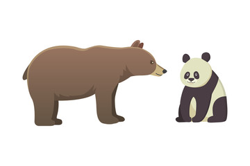 brown bear grizzly and panda