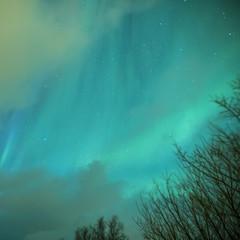 Picturesque Unique Northern Lights Aurora Borealis Over Lofoten Islands in Northern Part of Norway.