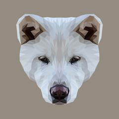 Akita Inu dog animal low poly design. Triangle vector illustration.