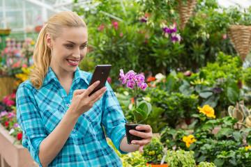 Mature woman shopping in a garden center