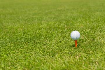 Golf ball on a tee placed on a green