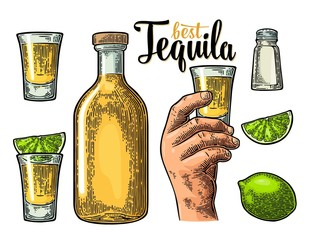 Set tequila. Hand hold glass, bottle, salt, lime whole and slice.