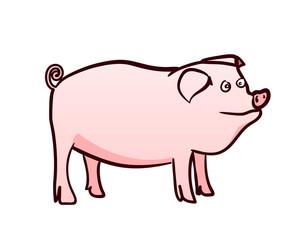Freehand drawn cartoon pig. Vector illustration