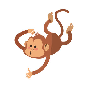 monkey cartoon icon over white background. colorful design. vector illustration