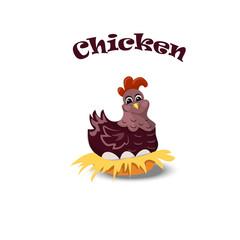 Hen or chicken in nest sitting on eggs