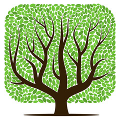 Vector tree with green leaves isolated on a white background