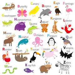 Zoo animal alphabet. Cute cartoon character set. White background. Baby children education. Butterfly, dolphin, flamingo, jaguar, lobster, penguin sloth kangaroo bat eagle unicorn Flat design